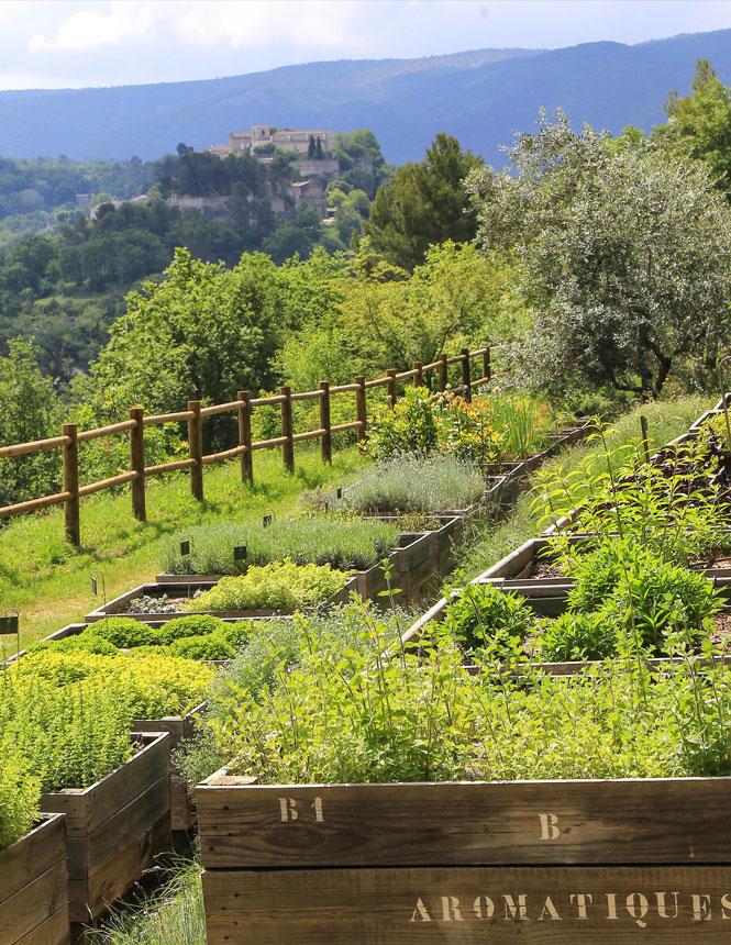Jardin du Domaine de la Citadelle @ Hocquel A.